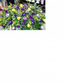 Purple Beauty Casketpiece