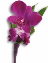 Purple dendrob Boutoneire  Boutoneire