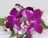 Purple dendrob wristlet  Corsage