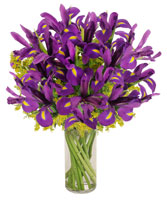 Purple Heart Iris Vase