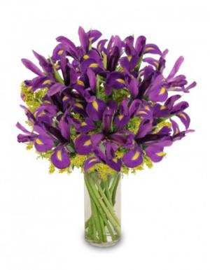Purple Heart Iris Vase in Mobile, AL | ZIMLICH THE FLORIST