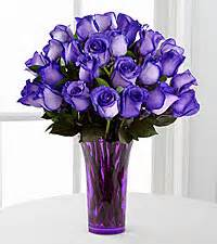 Purple Intrigue Roses 1 dozen Intrigue roses