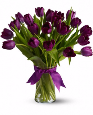 Purple Majesty Tulips vase spring. in Chatham, NJ | SUNNYWOODS FLORIST