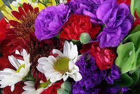 Purple Mixed Flower Bouquet Bouquet