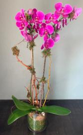 PURPLE ORCCHID ELEGANT MIXTURE OF FLOWERS