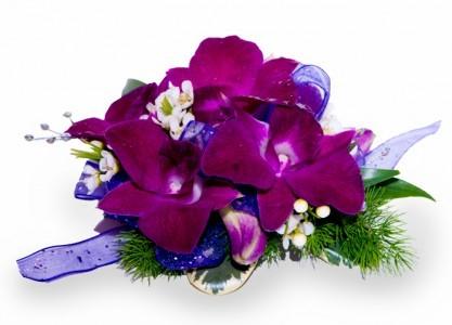 Purple Orchid Corsage With Blue Ribbon In Draper Ut Draper Flowerpros