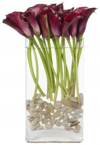 Pink Passion Calla lily vase arrangement