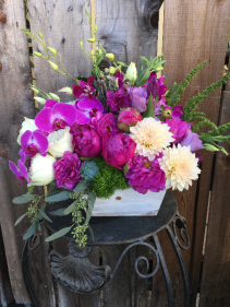 Passionate Purple Designer's Seasonal Bouquet