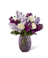 Purple Poinciana