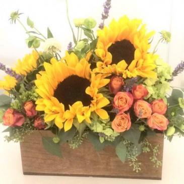 Sunflowers & Orange