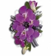 Purple Promise Wristlet T201-5a purple dendrobium orchids