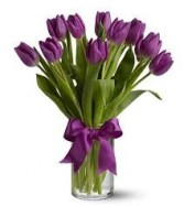 Purple Tulips ** call for availability **