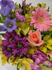 Purples PInks & Pastels Designer Choice