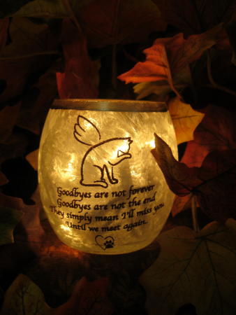 Purr-fect tribute Gift