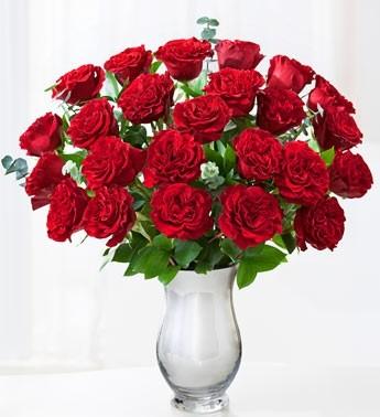 Queen of Hearts-24 Red Roses 2 dozen roses
