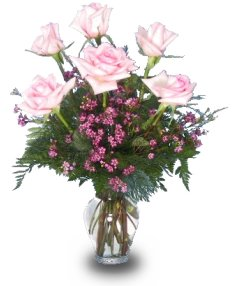 6 PALE PINK ROSES Vase Arrangement