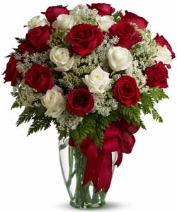 Love's divine Long Stem Red and White Roses in Orlando, FL | Artistic East Orlando Florist