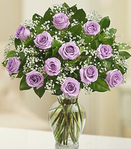 Rose Elegance Premium Long Stem Purple Roses Roses