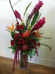 Racy Red  Tropical artistry
