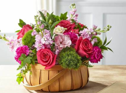 Radiance in Bloom Basket arrangement