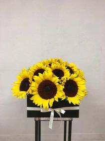 Radiant SuNfLoWeRs Sunflower Box