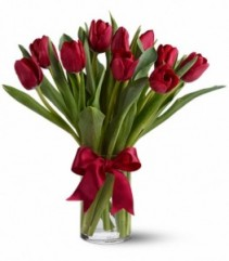 Radiantly Red Tulips ** call for availability **