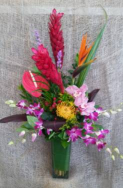 Rain Forest  Tropical Arrangement