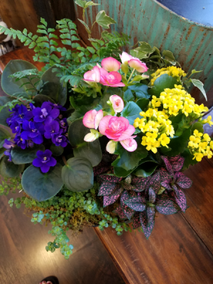 Rain Garden Blooming Planter in Crossville, TN | Poppies Florist