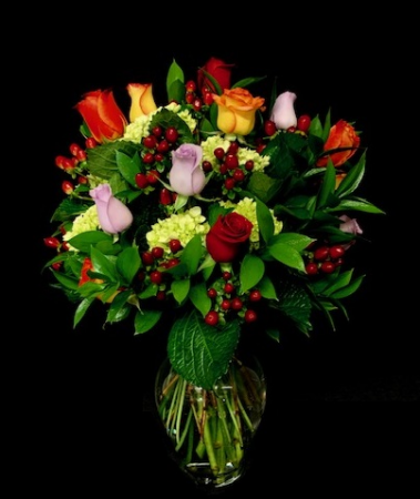 Rainbow Multiple Colored Mixed Roses