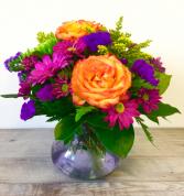 Rainbow Burst  Vased Fresh Flowers