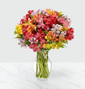 Rainbow Discovery Vase Arrangement