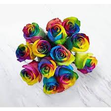 RAINBOW DOZEN ROSES