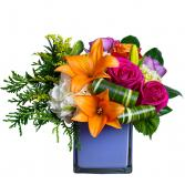 Rainbow Kisses Arrangement in Barre, Vermont   Forget Me Not Flowers and Gifts LLC