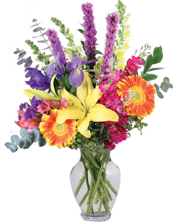 Rainbow Madness Floral Design