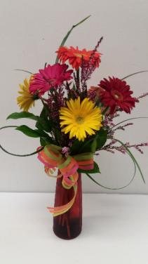 Rainbow of Daisies  Floral Arrangement