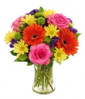 Rainbow of Flowers Get Well Flowers