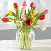 Rainbow of tulips Vase Arrangement