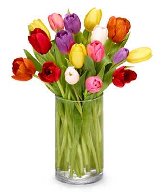 RainBow of Tulips  Vase Arrangement