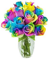 Rainbow Rose Dozen Valentine Day Arrangement