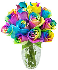 Rainbow Rose Dozen Valentine Day Arrangement