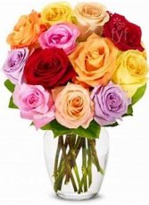 Rainbow Rose Special 1 Dozen multicolor roses