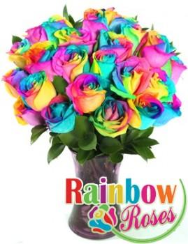 One Dozen RAINBOW ROSES  in Margate, FL | THE FLOWER SHOP OF MARGATE