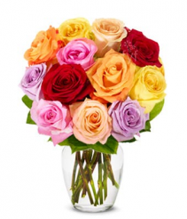 Rainbow Roses Bouquet 12, 18 or 24 Roses