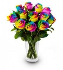 Rainbow Roses EF67
