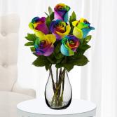 Rainbow Roses Half Dozen