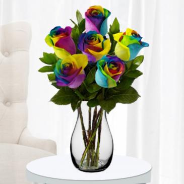 Rainbow Roses Half Dozen  Valentines Roses