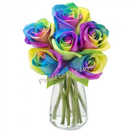 Rainbow roses  Rainbow roses