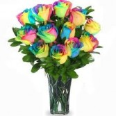 Rainbow Roses -shown 1 doz $85.00 vased Local Delivery only
