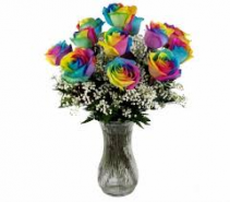 Rainbow Roses This Week  Limited Supply