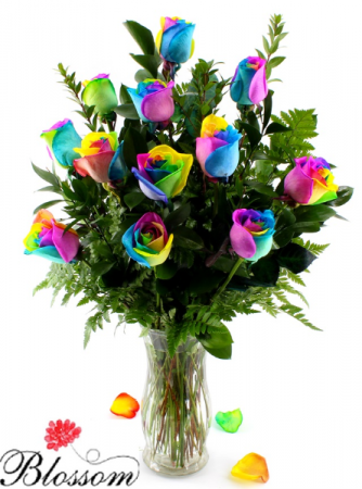 Rainbow Roses  Valentines Roses